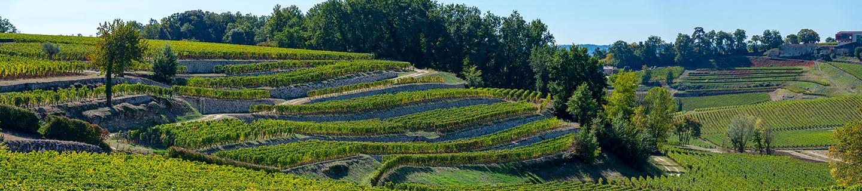 Wijngaarden rond Bordeaux