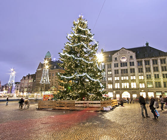 Christmas tree at Dam Square, Amsterdam
