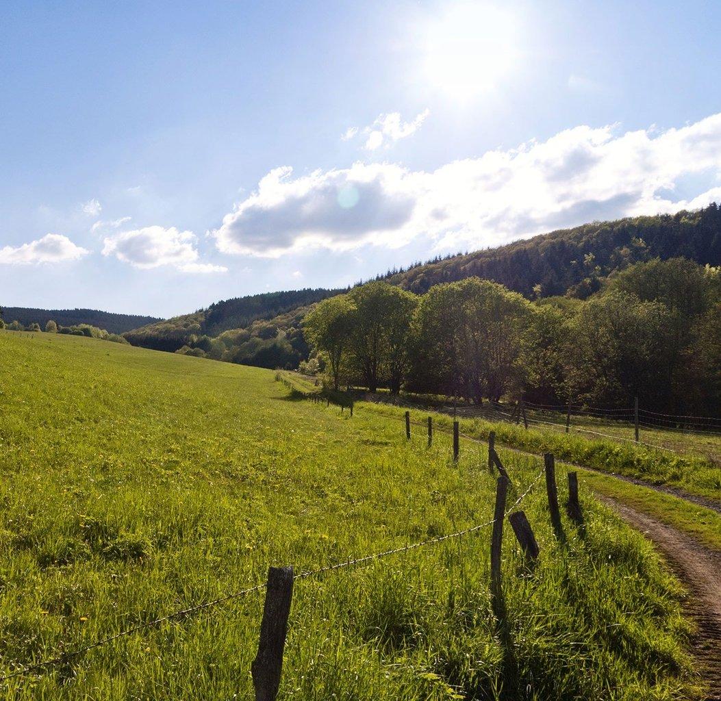 Eifelsteig hiking trail