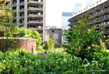 Beech Garden Barbican